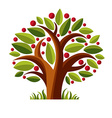 Fruity tree with ripe apples isolated on white vector image
