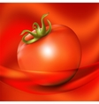Red fresh tomato on abstract red background vector image