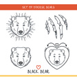 Black bear Set isolated face heads bear in lines vector image