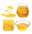 honey in honeycombs in jar vector image