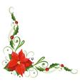 Poinsettia holly vector image