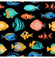 Tropical Fish Seamless Pattern vector image