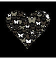 Heart the butterfly vector image