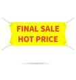 banner final sale hot price vector image
