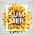 realistic beautiful sunflower frame yellow flower vector image