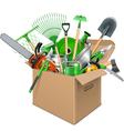 Carton Box with Garden Accessories vector image
