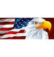 Symbol of USA vector image