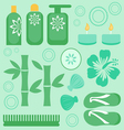 Spa collection vector image