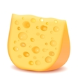 Cheese isolated on white vector image
