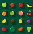 set of flat icons fresh natural fruits cartoon vector image
