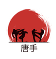 Men are engaged in karate vector image
