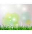 Green grass spring background vector image