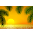Sunset sea and palm branch vector image
