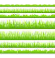 seamless green grass vector image