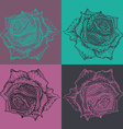 Beautiful hand drawn ornate rose flower in doodle vector image