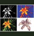 Multipurpose lily render vector image