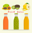 the theme fruit vector image