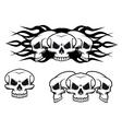 skulls tattoo vector image