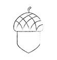 isolated acorn design vector image