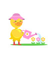funny little yellow duckling wearing pink hat vector image