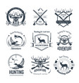hunting club icons hunt adventure hunter gun rifle vector image