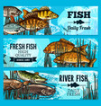 fresh fish sketch banners for market vector image