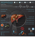 Liver And Gallbladder Medical Infographic vector image