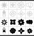 hand drawn flower collection vector image
