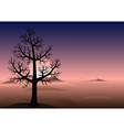 Lonely tree Sunset Mountains vector image