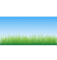 grass on sky background vector illustration vector image