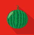 watermelon flat icon vector image