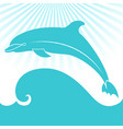 card with dolphin elegant gift card vector image