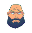 Cartoon Brutal Man Face with Beard vector image