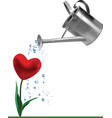 heart and watering can vector image vector image