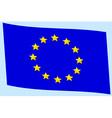 Flag of EU vector image vector image