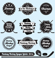Fantasy Hockey League Champions Labels vector image