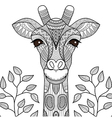 giraff coloring page vector image