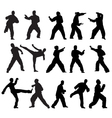 Martial Art Poses vector image vector image