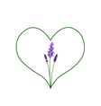 Beautiful Violet Lavender in A Green Heart Shape vector image