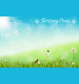 spring background with butterflies and dragonfly vector image