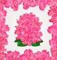 Seamless texture rhododendron in a frame vector image