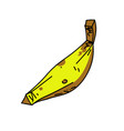 banana cartoon hand drawn image vector image