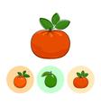 Fruit Icons Mandarin Lime Orange vector image