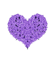 Beautiful Violet Lavender in A Heart Shape vector image