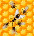 Bees and wasp vector image