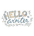 modern funny lettering hello winter hand color vector image
