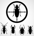 Bug in crosshair - insect insecticide vector image