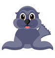 isolated cute seal vector image