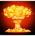 Nuclear bomb explosion vector image