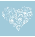 Heart of Sea shells vector image